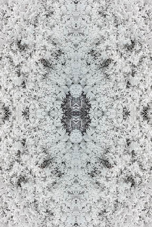 kaleidofrost-2