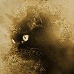 the-cat-lestat